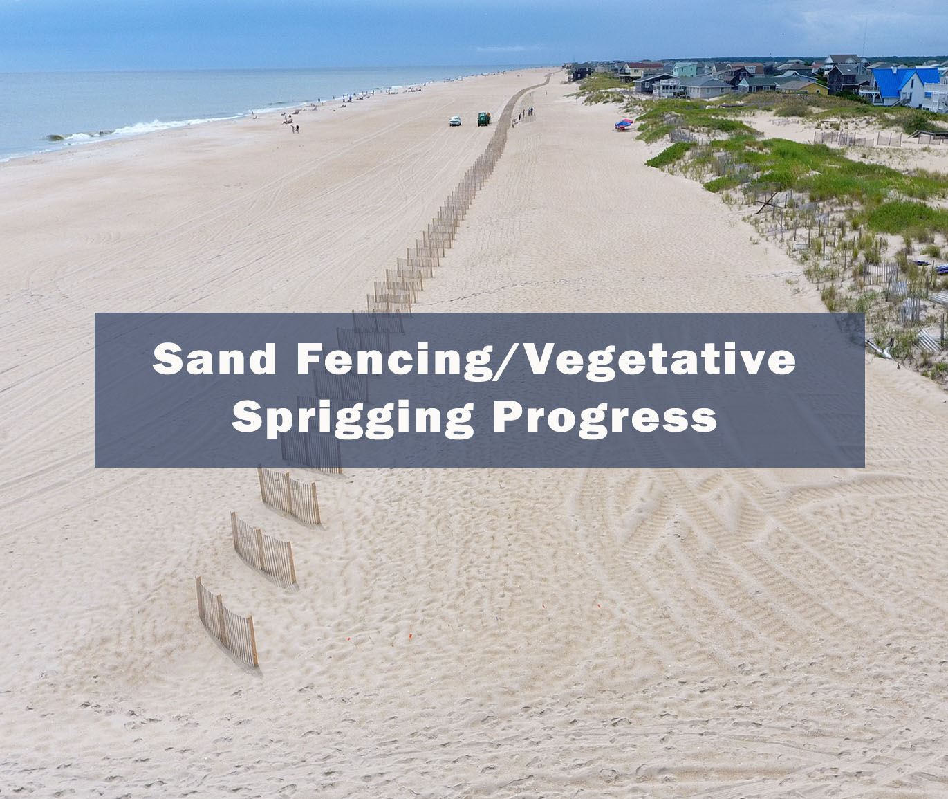 Sand Fencing Vegetative Sprigging Progress Map