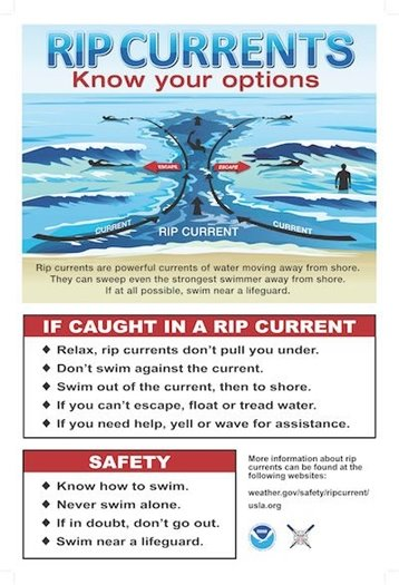 Rip Currents - Know Your Options