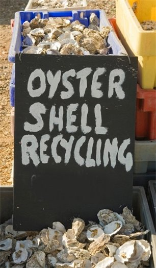 If local, plump oysters are on the menu for celebrating 2021, be sure to put those empty shells to good use by dropping them off at an oyster shell recycling site, such as Jockey's Ridge. Click on this text for more information.